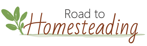 Road To Homesteading